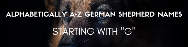 names of german shepherd starting with g